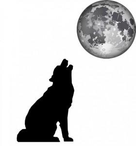 月と犬silhouette-313661_640