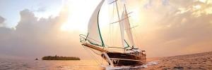 Sailing-Ship-s