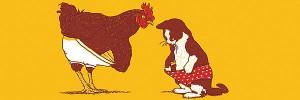 猫鶏Rooster-and-Cat-s