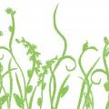 防草シートの選び方【動画つき】雑草とのイタチゴッコに終止符を!