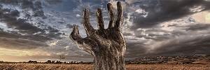 手の木The-tree-hand-s