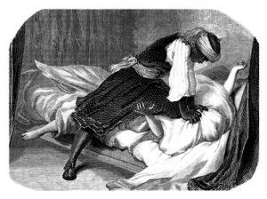 Stich, Abbildung, engraving, gravure :1856.