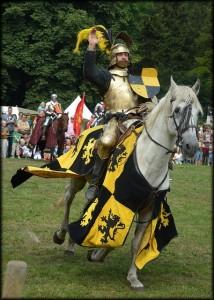 騎士 spectacular-knight-216680_640