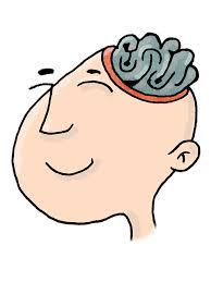 脳images