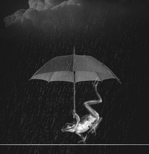 weatherman-849792_640