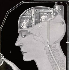 脳human_brain_in_action