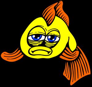 泣く魚 fish-161031_960_720