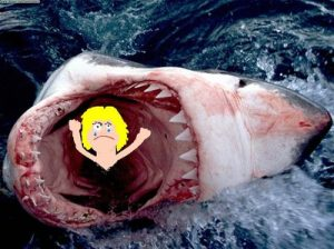 shark-south-africa6_111449996