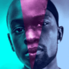 ムーンライトの評価は?出演者全員黒人の映画になぜアカデミー賞が?